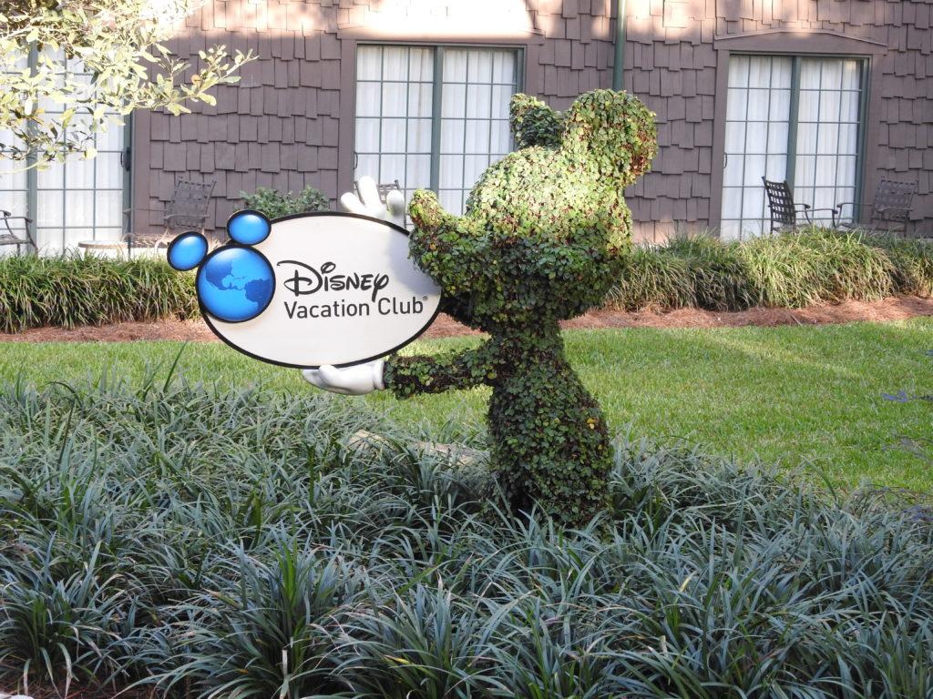 Mickey bush with Disney Vacation Club sign